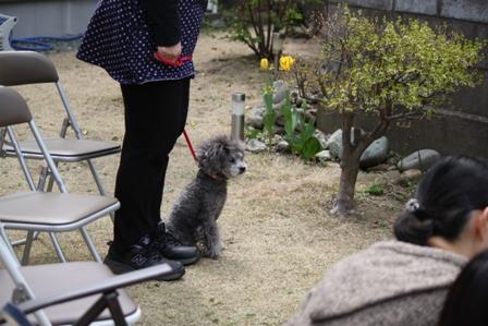 2015-04-19_IMG_9783