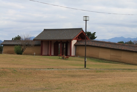 2010/11/25-1