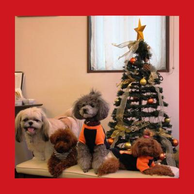 2013-12-23_christmas