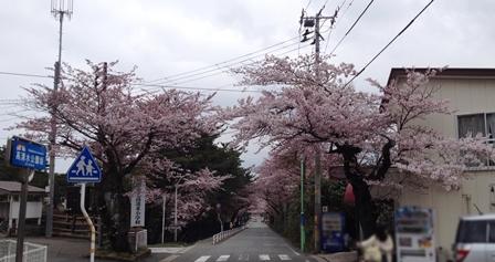 2014-04-23_img_3083.jpg