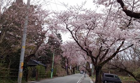 2014-04-23_img_3085.jpg