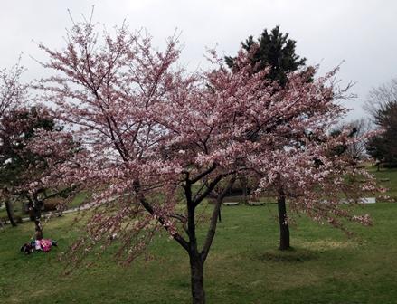 2014-04-23_img_3088.jpg