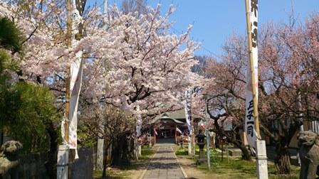2014-04-24_dsc_0002.jpg