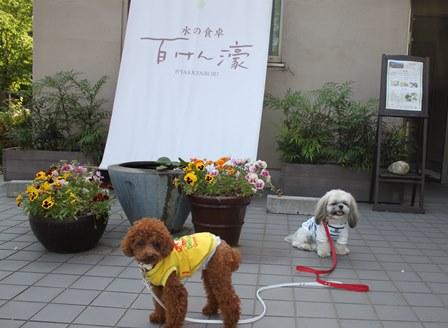 2014-05-29_img_8066.jpg